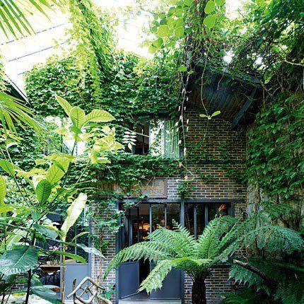 """""""un petit éden vert fait de fougères arborescentes de Tasmanie, de dattiers, de néfliers et de gardénia. Des plantes qui ne nécessitent que peu de lumière pour s'épanouir"""""""