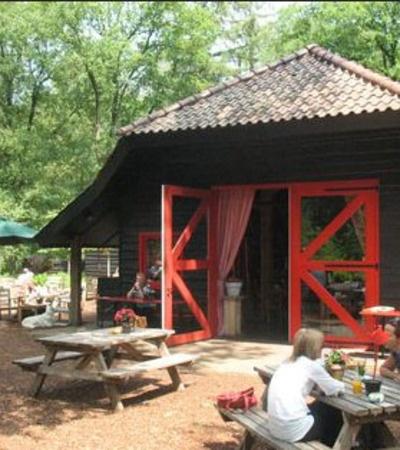 Taartje eten bij theehuis 't Hooge erf gelegen tussen Baarn, Hilversusm en Lage Vuursche