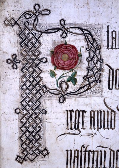 "chasingthegreenfaerie:  ""ysvoice:  "" 