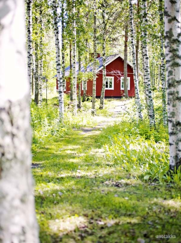 Traditional Finnish summer cabin.
