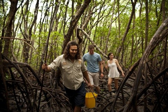 Queensland bucket list | 40. Go hunting for mud crabs through the mangroves then cook up your catch with Kuku Yalanji brothers, Linc and Brandon Walker.