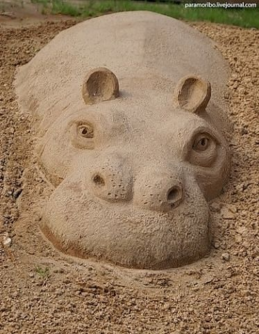 Sand Sculpture. This reminds me of going to the SD zoo as a kid