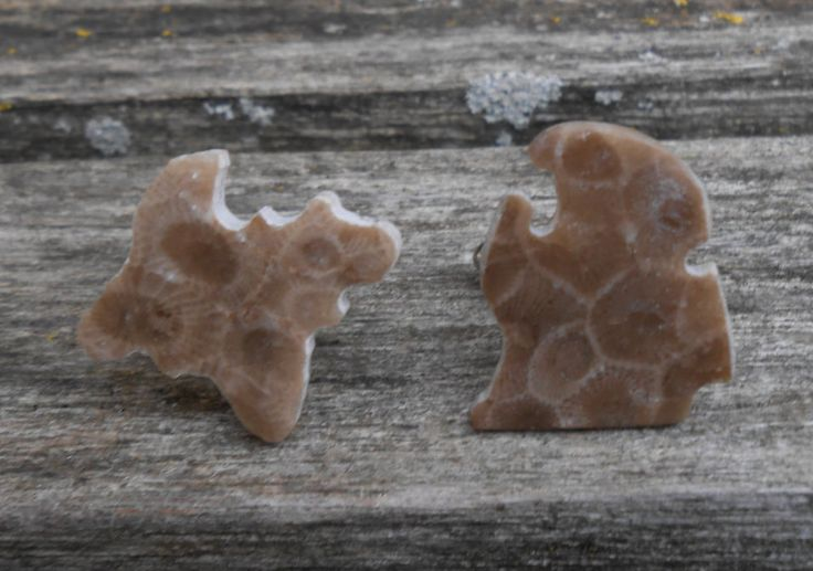 Petoskey Stone MICHIGAN Cufflinks. Fossilized Coral. Wedding, Men's Christmas Gift, Dad, Anniversary Gift. Upper, Lower Penninsula by TreeTownPaper on Etsy