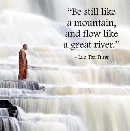 Lao Tzu Quotes Life Best 211 Best Lao Tzu Images On Pinterest  Lao Tzu Quotes