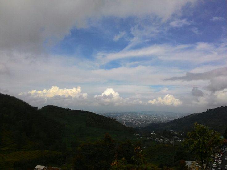 Kebun Teh Puncak Pass - Bogor