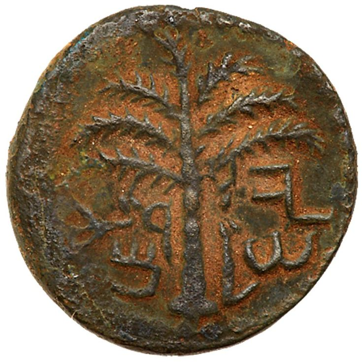 Judaea, Bar Kokhba Revolt. AE Small Bronze (4.22 g), 132-135 CE Choice VF (132/3 CE). 'Jerusalem' (Paleo-Hebrew), seven-branched palm tree with two bunches of dates. 'Year one of the redemption of Israel' (Paleo-Hebrew), bunch of grapes with branch and small leaf. Mildenberg 151 (O1/R5); TJC 227. Brown patina with earthen highlights. The Brody Family Collection; Purchased privately from Superior, January 1989. This small bronze denomination is linked to the silver sela and one series of…