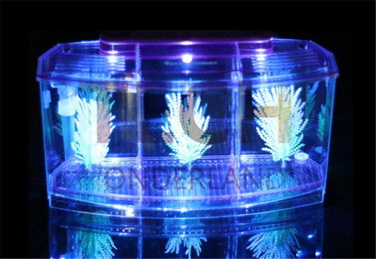 Высокое качество сша PENNP лакса бетта дом три разделяет мини из светодиодов ( день и ночь, Двухцветный ) борьба бетта аквариум аквариум