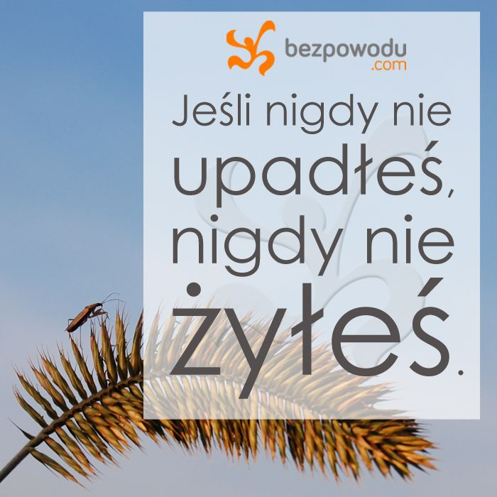 Jeśli nigdy nie upadłeś, nigdy nie żyłeś. | BezPowodu.com | #inspiracja #motywacja #cytaty #cytat