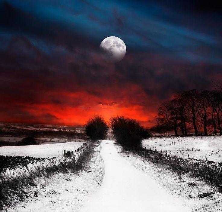 Breathtaking...: Photos, Winter, Nature, Sunset, Beautiful, Road, Beauty, Moonlight, Photography