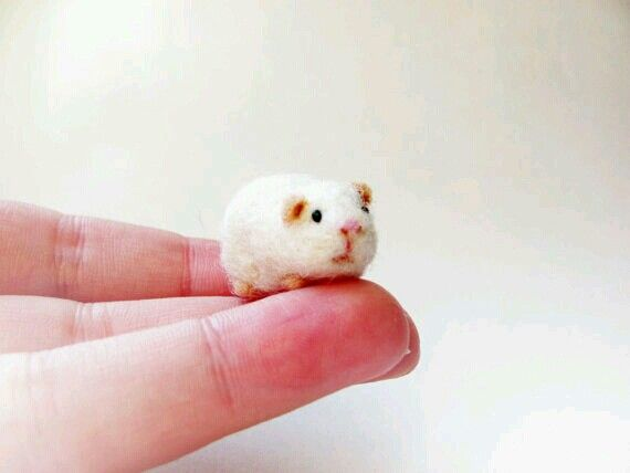 Mickey, the miniature handmade needle felted guinea pig