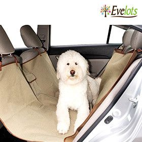 Puppy Love: Pet Toys & Accessories Clearance | Choxi.com