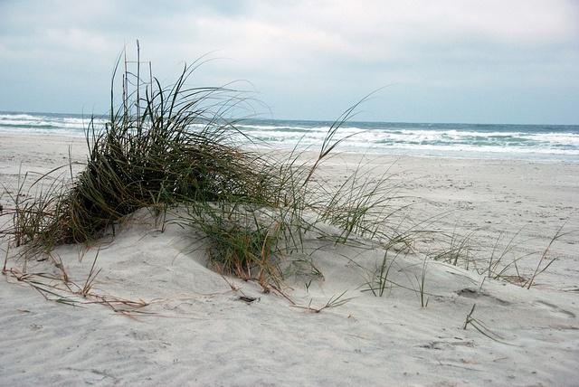25 best ideas about new smyrna beach on pinterest for New smyrna beach fishing spots