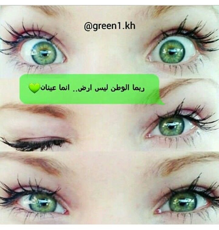 Pin By اميرة بأخلاقي On اخضر Funny Quotes Arabic Quotes Quotes