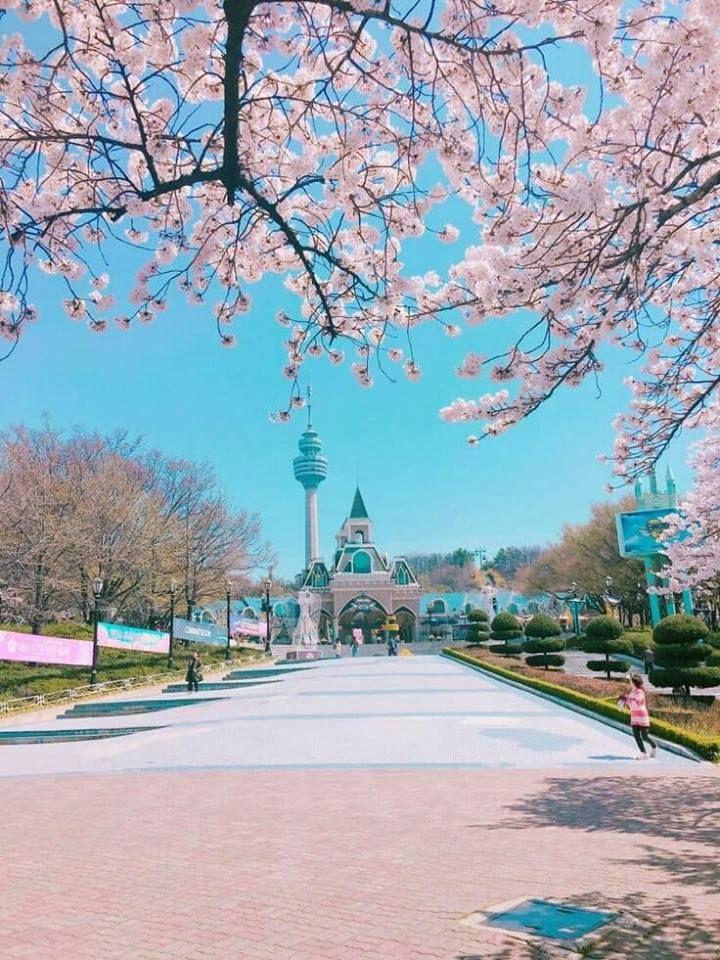 Jika kamu memutuskan mengunjungi Gunung Takao di musim