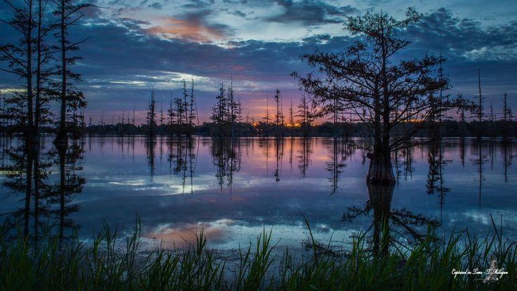 Mallard Lake in Arkansas just before sunrise today, October 21, 2017