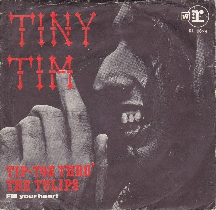 Tiny Tim (musician)