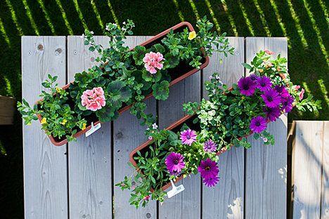 A vidíte tytéž květníky s rostlinami vhodnými na slunná místa svrchu!; Jakub Jurdič
