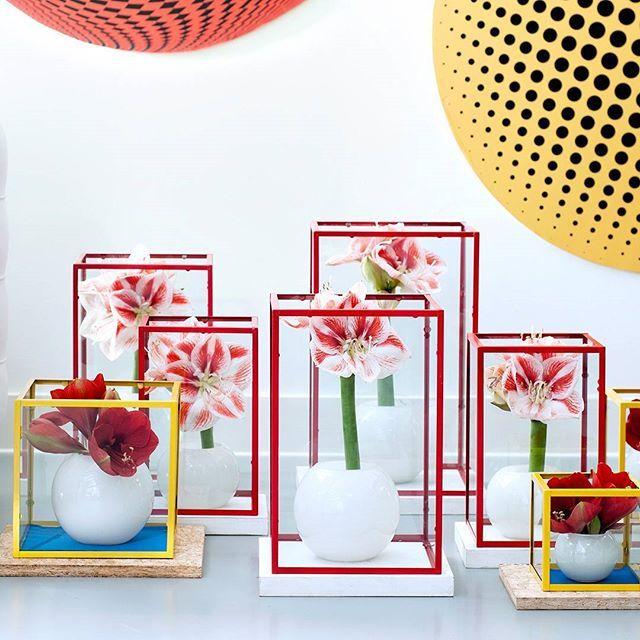 Bloemen en planten stijltrends 2016: Reconsider spaces