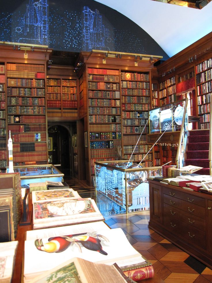 The Library of the History of Human Imagination