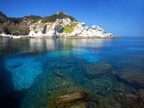 Crociera in catamarano all'isola d'Elba