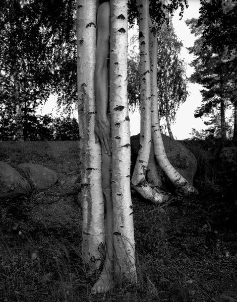 Arno Rafael Minkkinen ~ Legs