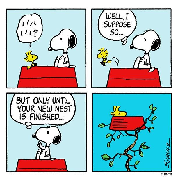 Thursday with Snoopy and @Woodstock.                                                                                                                                                                                 More