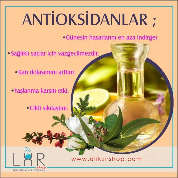 Antioksidanların Faydalarını Gözardı Etmeyin.