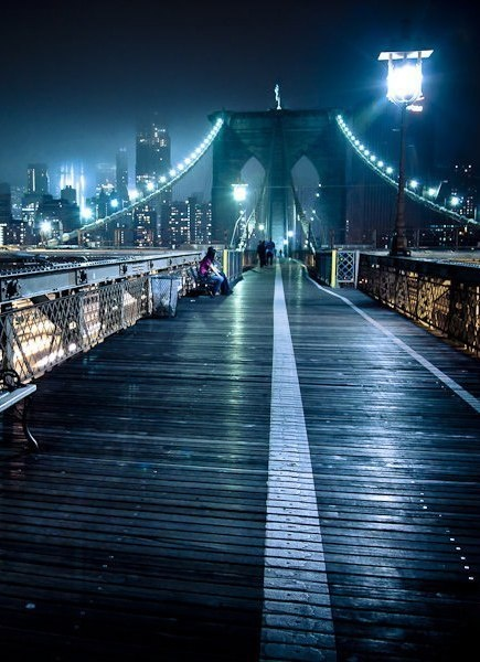brooklyn bridge essay