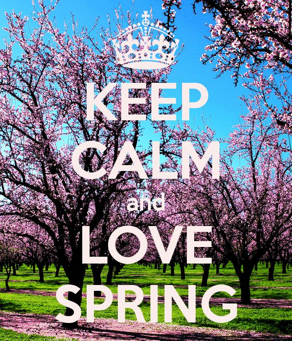 keep calm and live spring - Google Search