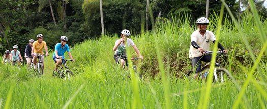 Ubud Bike Ride Through Rice Paddies