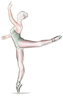 Danseuse effectuant une attitude, l'une des poses caractéristiques de la danse classique.