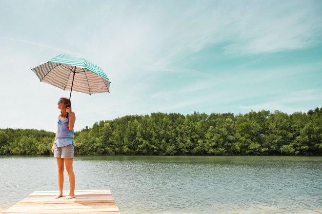 """""""Stella de Silva"""" Casa de La Flora's Mangrove Project"""