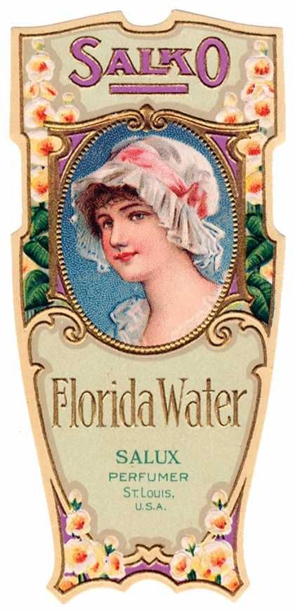 Salko Florida Water