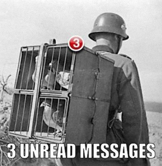 Old Notifications