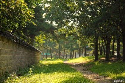 당일치기 전주여행 코스(한옥마을, 경기전, 전동성당) : 네이버 블로그
