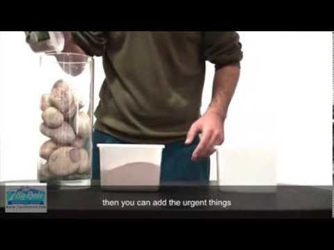 7 Big Rocks   Stephen Covey   Put the Big Rocks in First Time Management