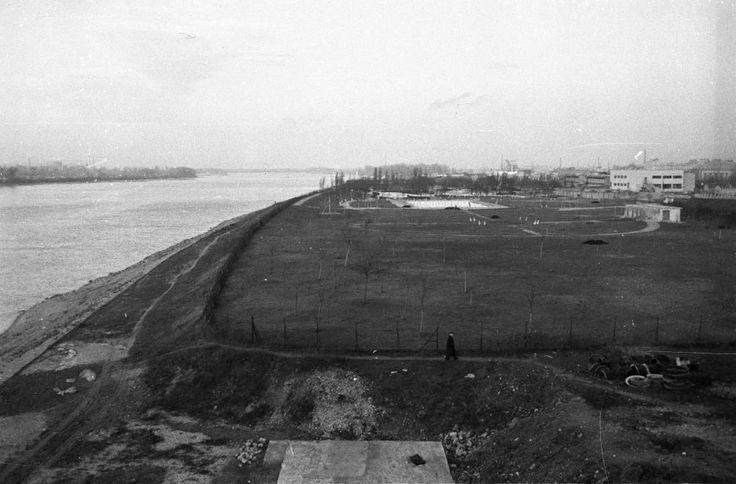 Dagály Strandfürdő az Árpád hídról nézve. 1960
