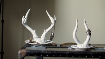 Royal Tine Jewelry Holders by IMM Living: Imm Living, Royal Tine, Tine Jewelry, Royals, Jewelry Display, Deer Antlers, Jewelry Holders, Antler Jewelry Holder, Deer Antler Jewelry