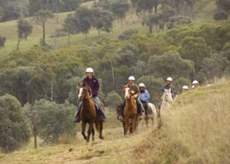 Rubicon Valley Horse Riding