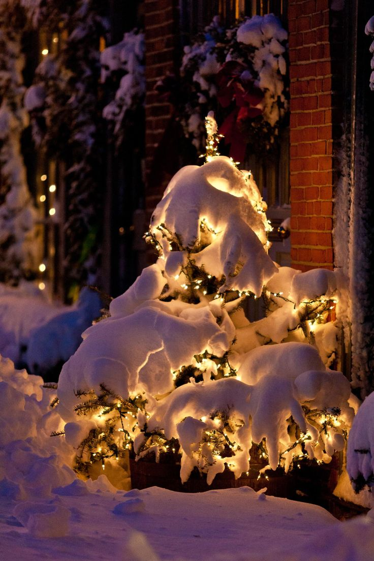 Best 687 Winter ideas on Pinterest | Winter, Winter wonderland and Xmas
