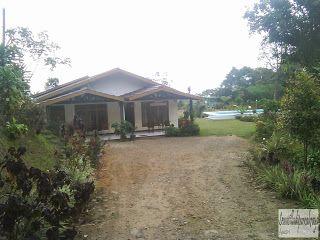 Villa disewakan dipuncak dekat perkebunan teh ciliwung dan ada kolam renang