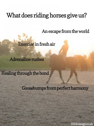 So true. <3 <3 <3 And trust me, today, I need an escape badly... Heading to the barn as soon I can today.