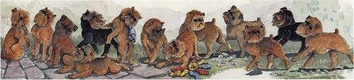 Enid Groves Brussels Griffon Print | eBay