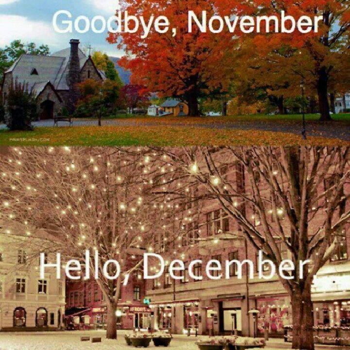 November's leaves of gold welcome December's trees of winter white.