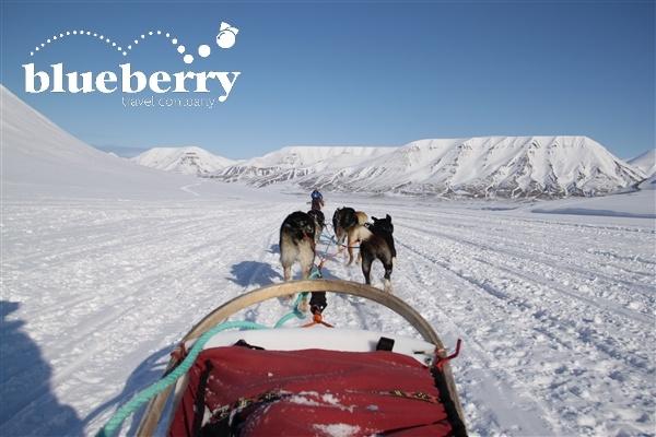Husky safari alle Svalbard