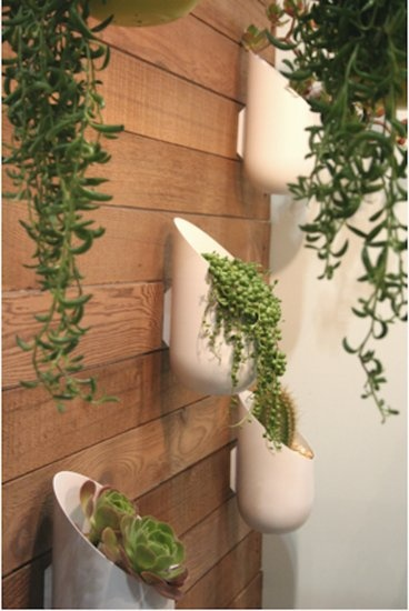 Outdoor Wall Planters for privacy with ikea pots/ hanger hook things