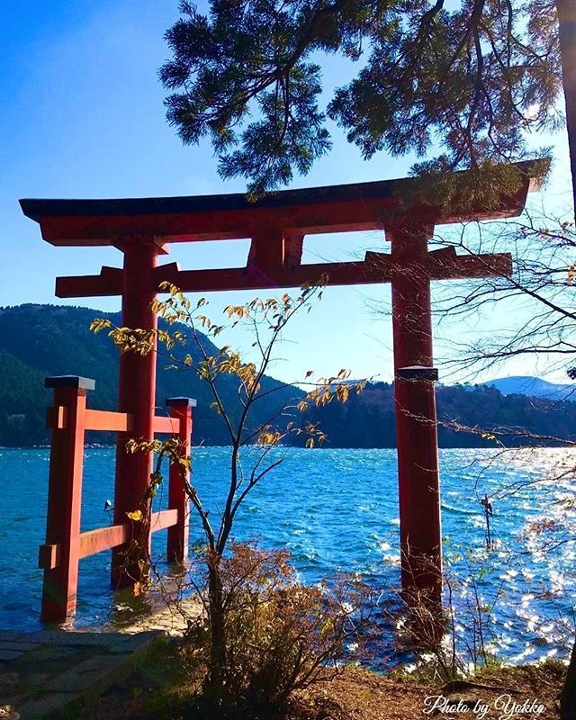 omairi.club on Instagram pinned by myThings 箱根神社神奈川県足柄下郡箱根町 →https://omairi.club/spots/77980 芦ノ湖上にたたずむ『平和の鳥居』⛩遠くから見ても水上に浮かぶ鳥居はとても素敵♥️1952年に連合国との講和条約締結を記念して建てられたものです✨  写真ははらぺこスヌーピーさんの投稿です。 皆様も気軽にOmairiにご投稿ください❗️ Omairiの会員登録と投稿はこちらから → https://omairi.club/users/sign_up  #神社 #神社仏閣 #寺院 #パワースポット #omairi #御朱印 #御朱印帳