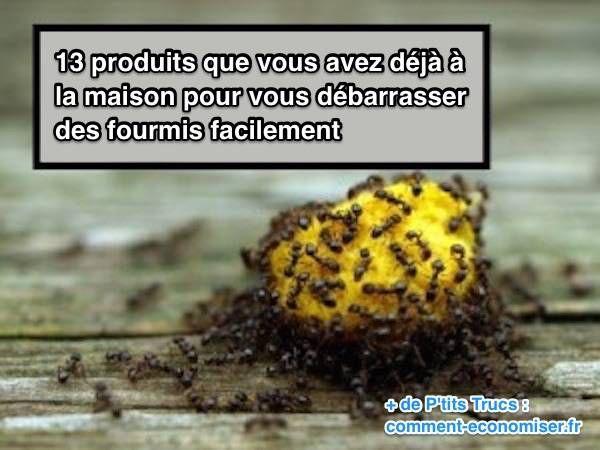 Vous cherchez des astuces naturelles pour repousser les fourmis ? Vous êtes au bon endroit ! Découvrez l'astuce ici : http://www.comment-economiser.fr/13-produits-efficaces-pour-vous-debarrasser-fourmis.html?utm_content=buffer2cc8e&utm_medium=social&utm_source=pinterest.com&utm_campaign=buffer