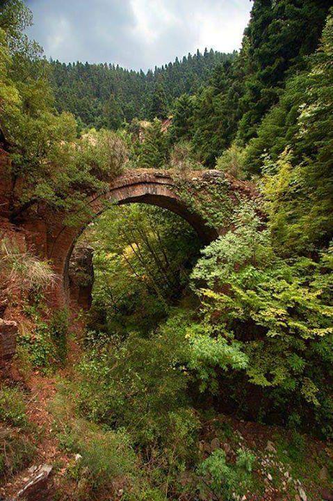 Stone bridge in Doliana (Evrytania) https://www.facebook.com/maria.m.papadopoulou?fref=nf