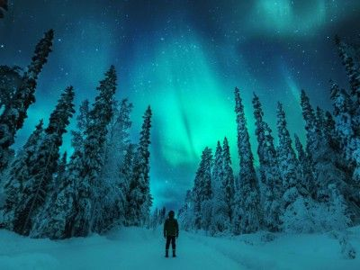 the Best place to spot The Northern Lights Some of world's best Northern Lights can be spotted in Finnish Lapland. TheAurora Borealis – as they are also called – can appear more than 200 nights a year. That's pretty much every winter night.